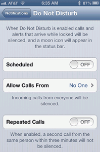 iPhone Do Not Disturb Setting Screen